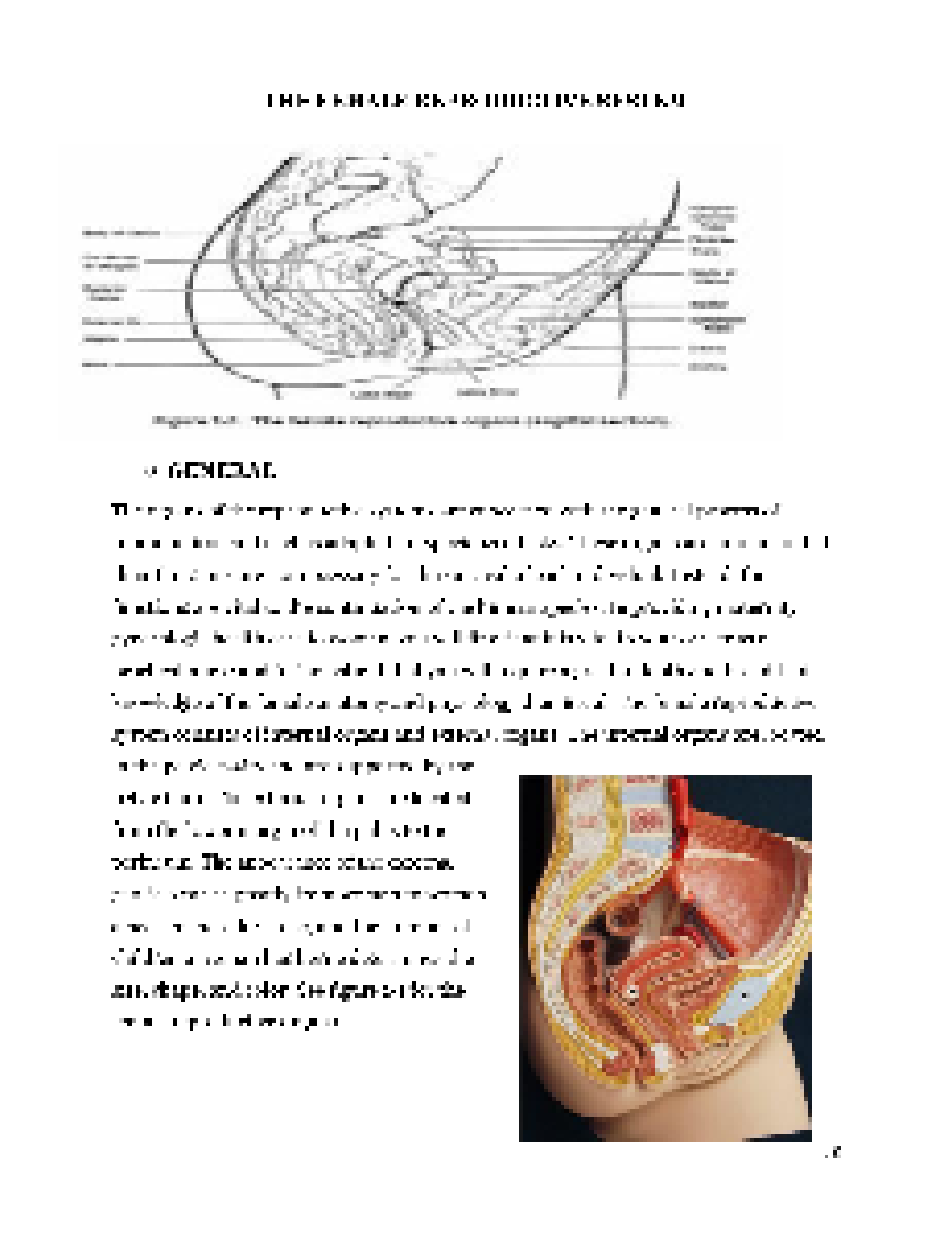 Solution placenta previa case study studypool acknowledgementthis project would not be made possible without the help and guidance of our almighty father who conveyed our group adequate knowledge pooptronica Choice Image