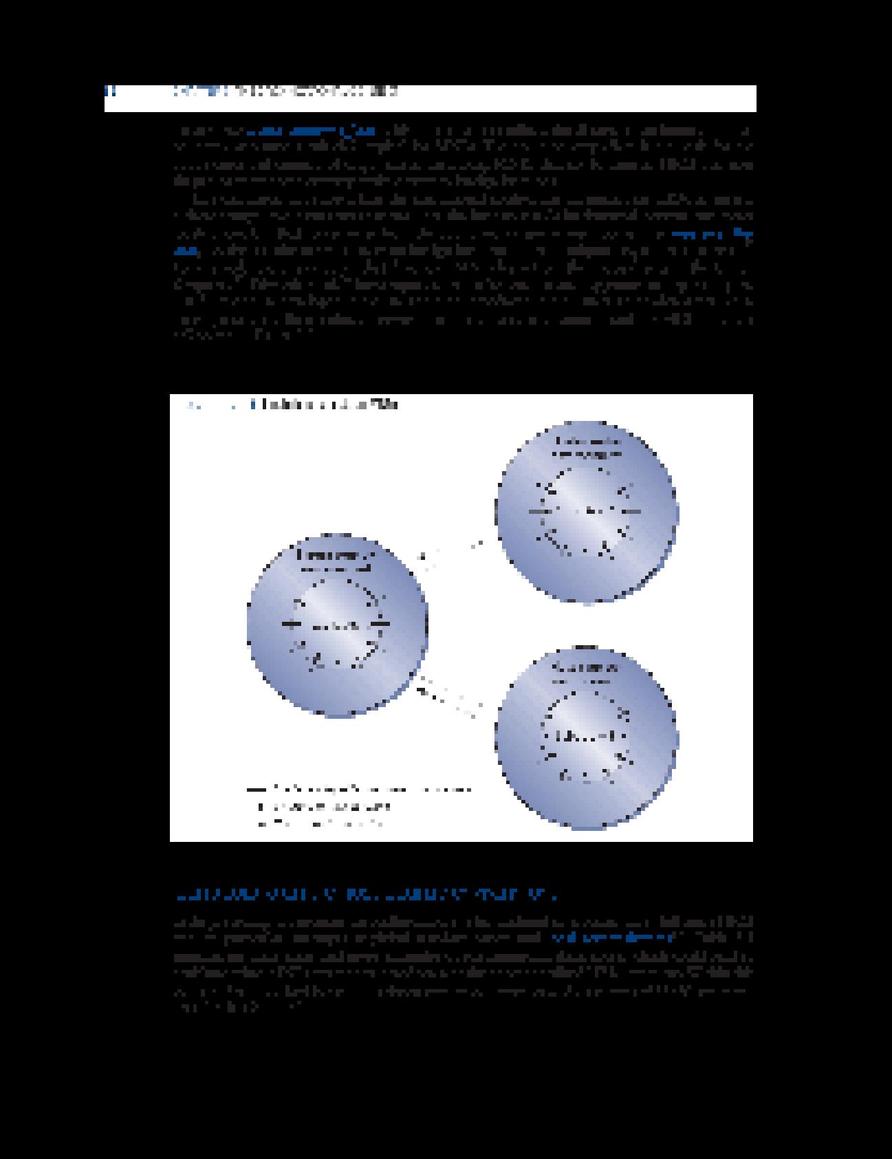 international human resource management peter j dowling pdf 6th edition