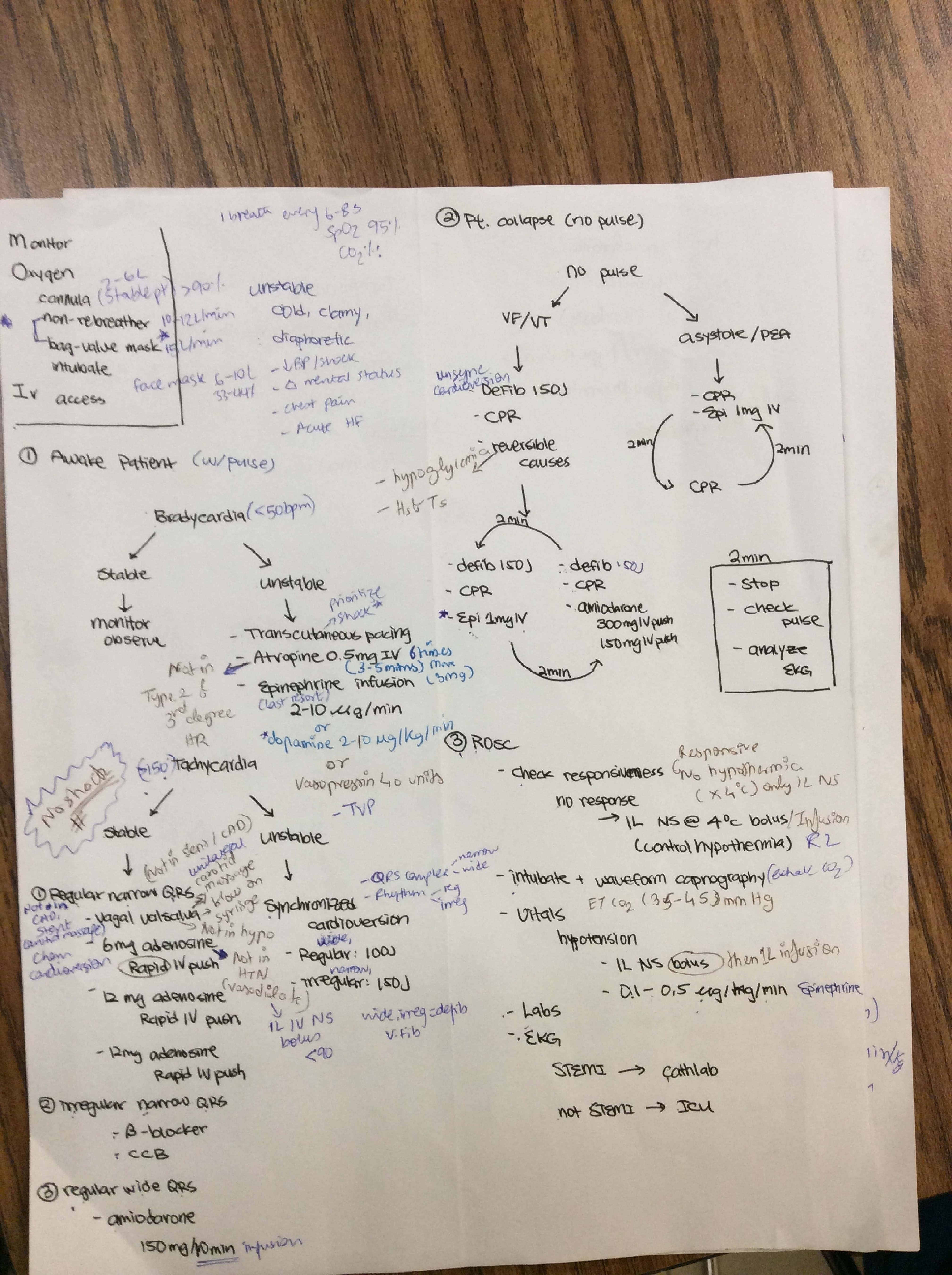 3rd exam terms and notes Molecular biology structure of nucleic acids dna replication and repair dna transcription post-transcriptional rna processing genetic code dna translation.